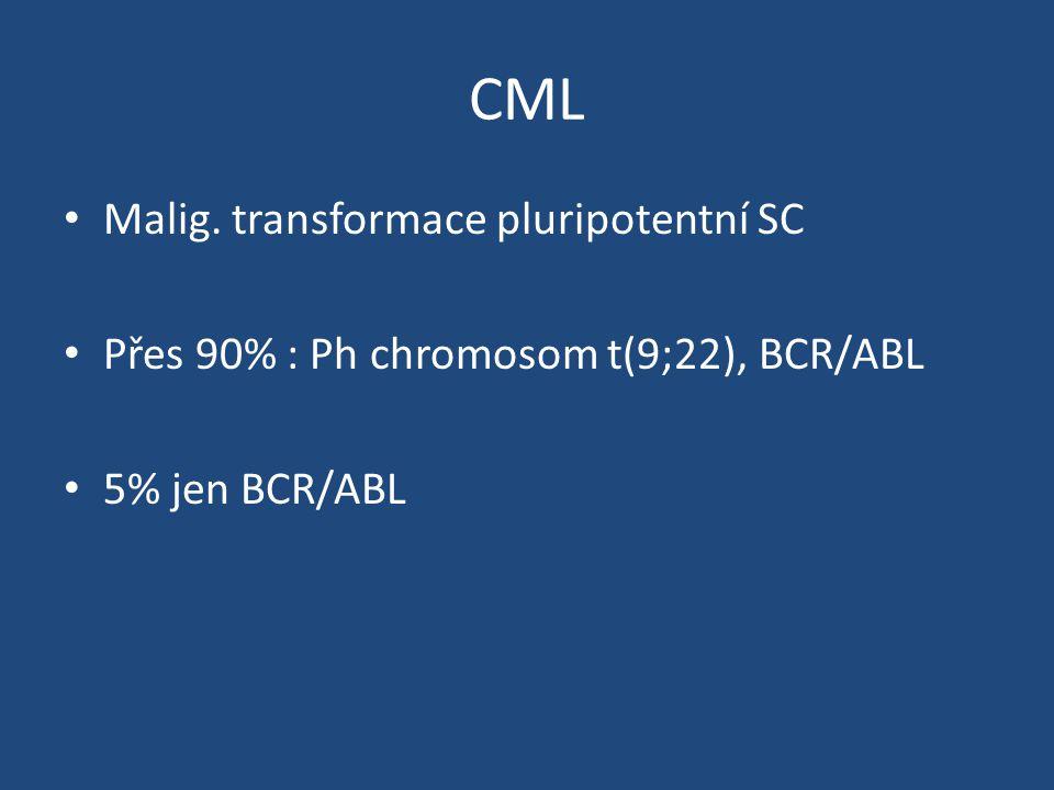 CML Malig. transformace pluripotentní SC Přes 90% : Ph chromosom t(9;22), BCR/ABL 5% jen BCR/ABL