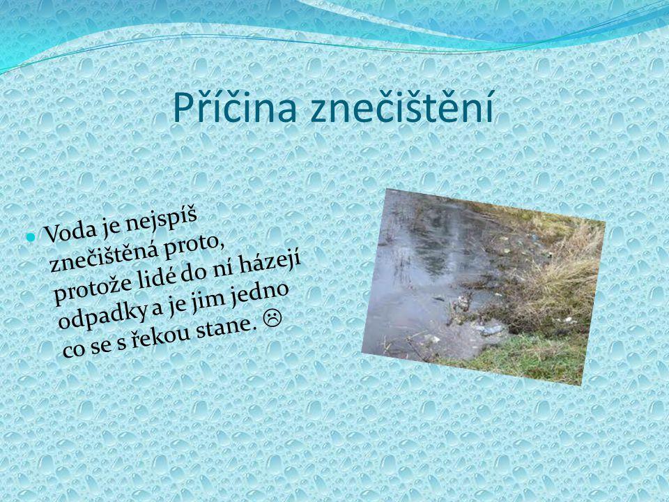 Příčina znečištění Voda je nejspíš znečištěná proto, protože lidé do ní házejí odpadky a je jim jedno co se s řekou stane. 