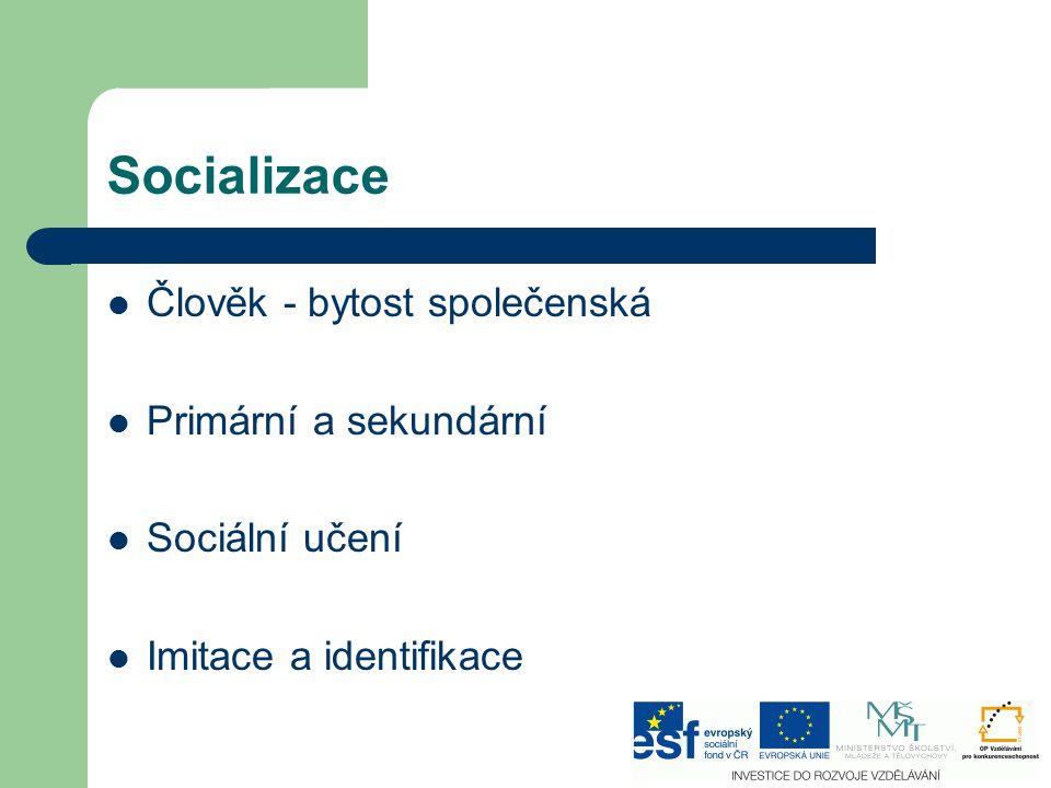 Socializace Člověk - bytost společenská Primární a sekundární Sociální učení Imitace a identifikace