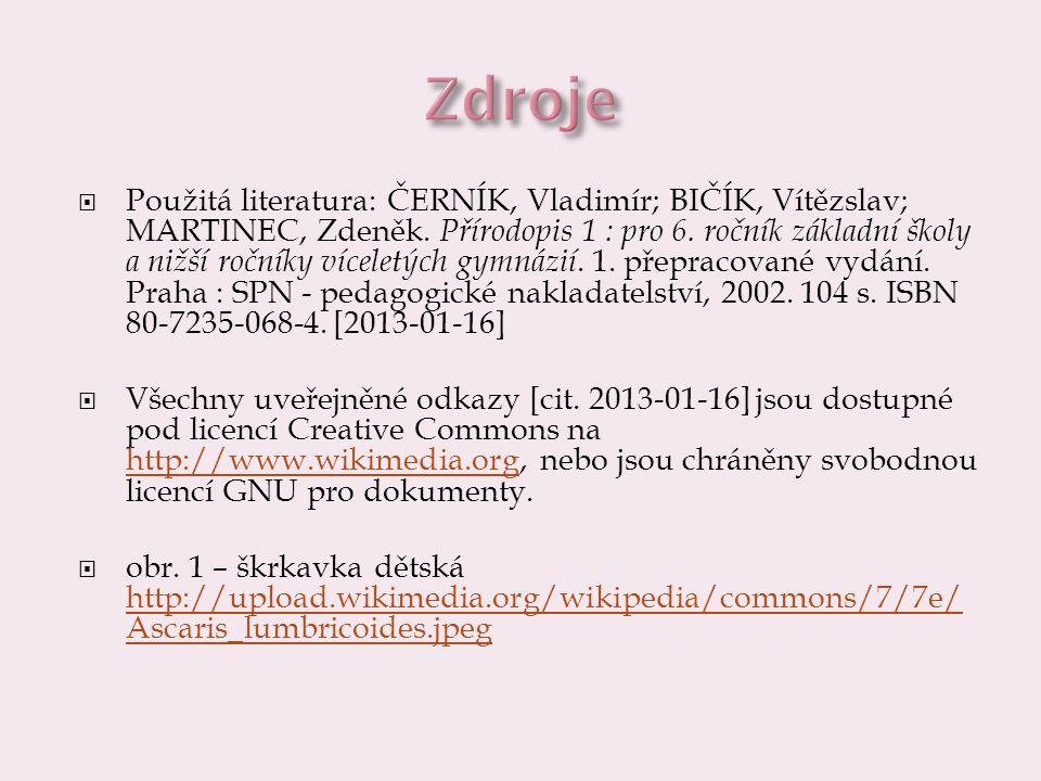  Použitá literatura: ČERNÍK, Vladimír; BIČÍK, Vítězslav; MARTINEC, Zdeněk.