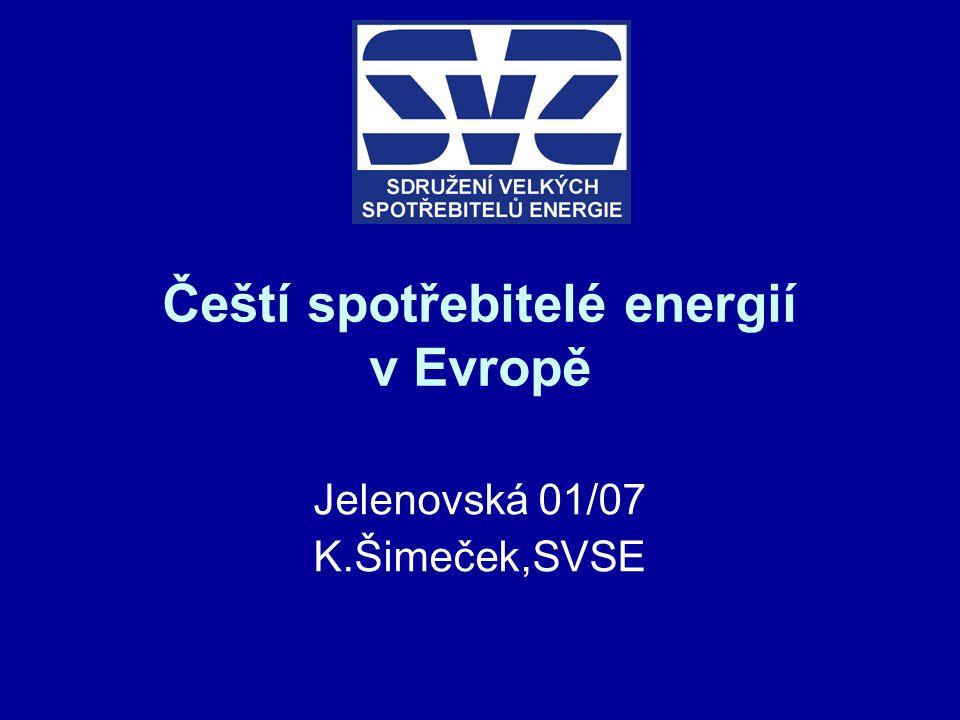 Čeští spotřebitelé energií v Evropě Jelenovská 01/07 K.Šimeček,SVSE