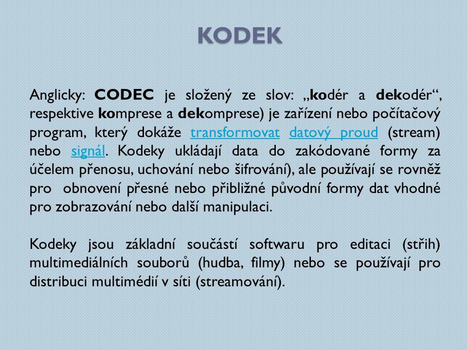 PŘÍKLADY KODEKŮ AUDIO KODEKYVIDEO KODEKY Windows Media Audio Monkey's Audio Speex Windows Media Video DivX Pro Codec Xvid Free Lossless Audio Codec 3ivx