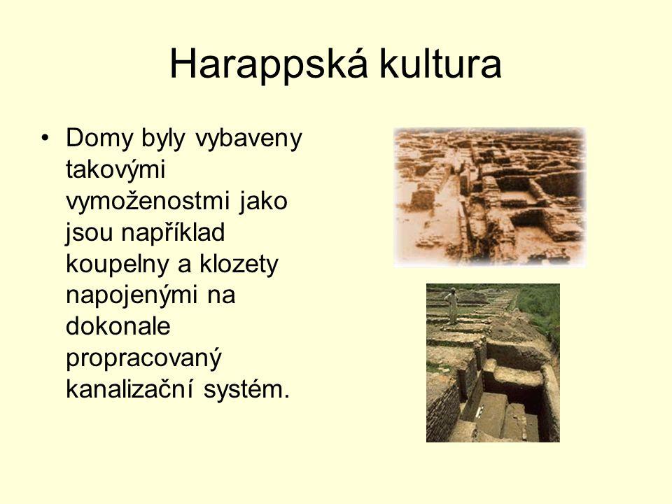 Harappská kultura Domy byly vybaveny takovými vymoženostmi jako jsou například koupelny a klozety napojenými na dokonale propracovaný kanalizační syst