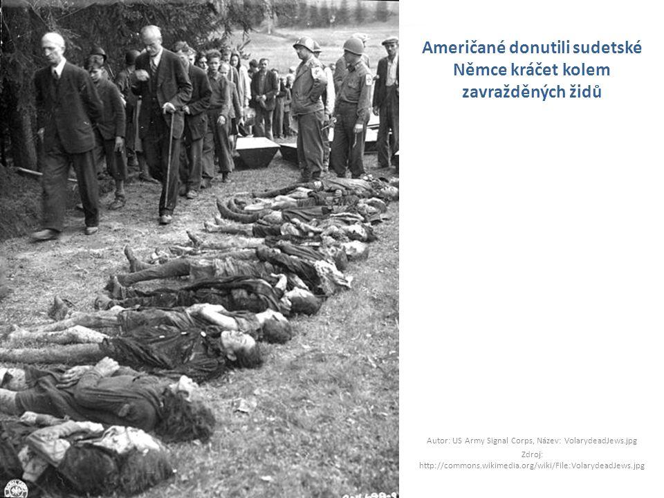 Američané donutili sudetské Němce kráčet kolem zavražděných židů Autor: US Army Signal Corps, Název: VolarydeadJews.jpg Zdroj: http://commons.wikimedi