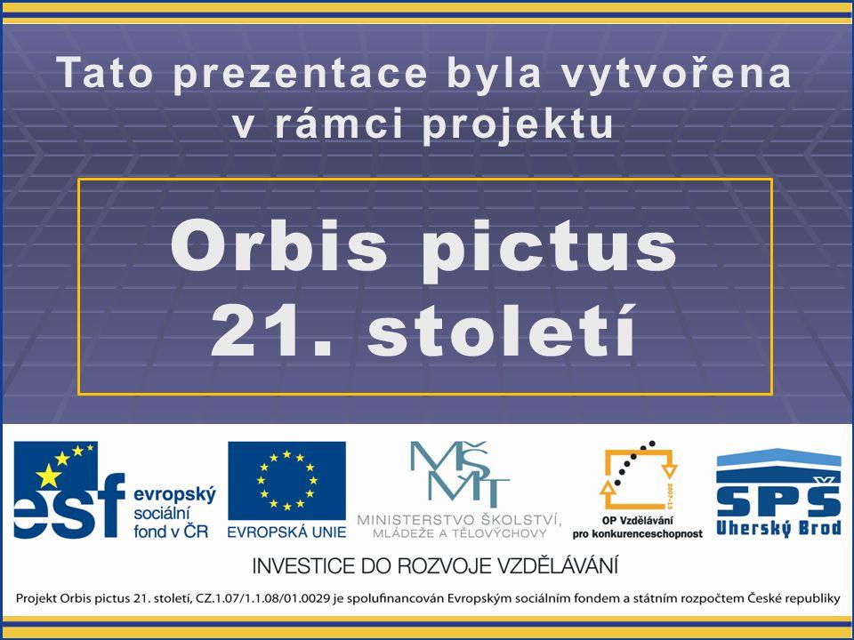 Využití znalostí MMT  příprava propagace, reklamy  střih záběrů domácího videa  odbornější rozhodování při nákupu MMT  správné nastavení MMT v provozu  ochrana zdraví - uší a očí - při dlouhodobém používání MMT