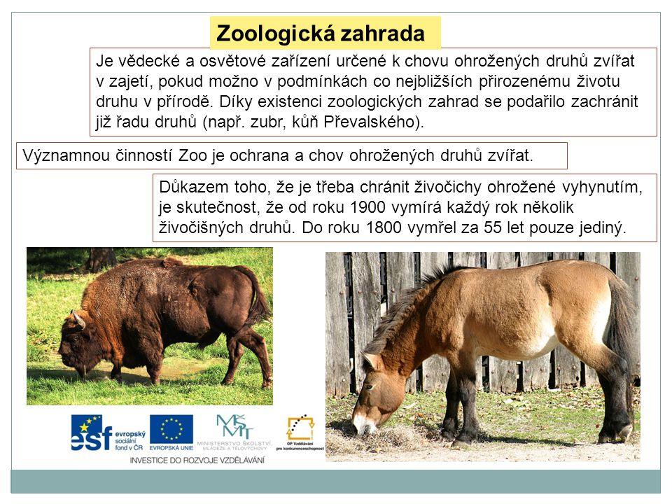 Zdroje: Soubor:Water world, Zoo Prague.jpg.Wikipedie [online].