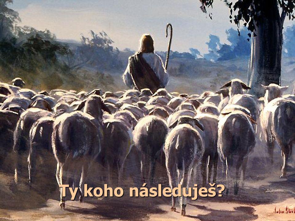 """""""Ježíš k nim opět promluvil a řekl: 'Já jsem světlo světa. Kdo mne následuje, nebude chodit ve tmě, ale bude mít světlo života.' """" Jan 8,12 Ježíše Kri"""