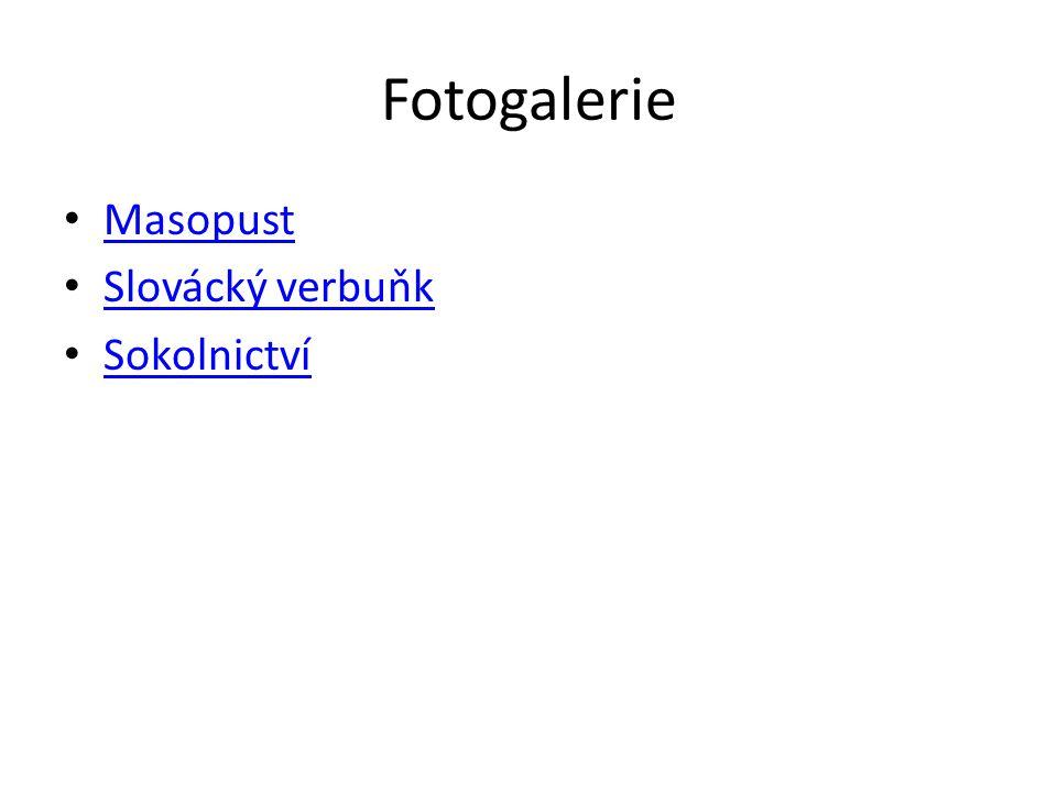 Fotogalerie Masopust Slovácký verbuňk Sokolnictví