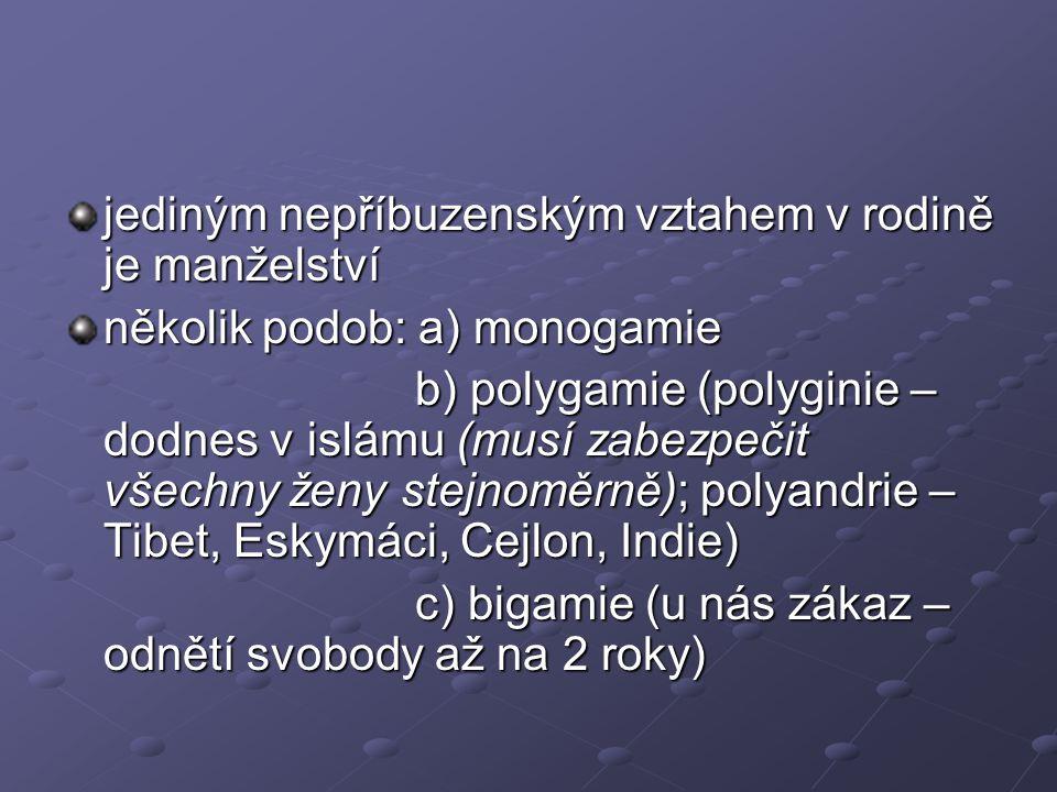 jediným nepříbuzenským vztahem v rodině je manželství několik podob: a) monogamie b) polygamie (polyginie – dodnes v islámu (musí zabezpečit všechny ž