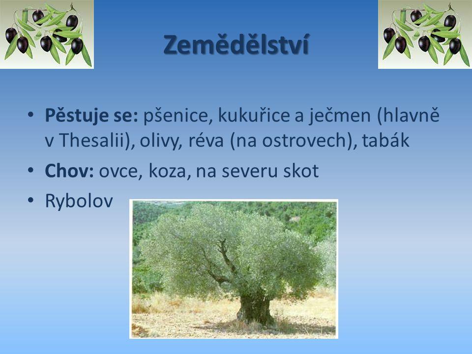 Zemědělství Pěstuje se: pšenice, kukuřice a ječmen (hlavně v Thesalii), olivy, réva (na ostrovech), tabák Chov: ovce, koza, na severu skot Rybolov