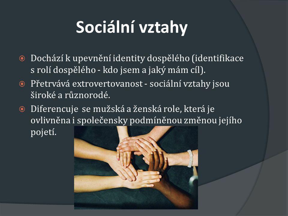 Sociální vztahy  Dochází k upevnění identity dospělého (identifikace s rolí dospělého - kdo jsem a jaký mám cíl).  Přetrvává extrovertovanost - soci