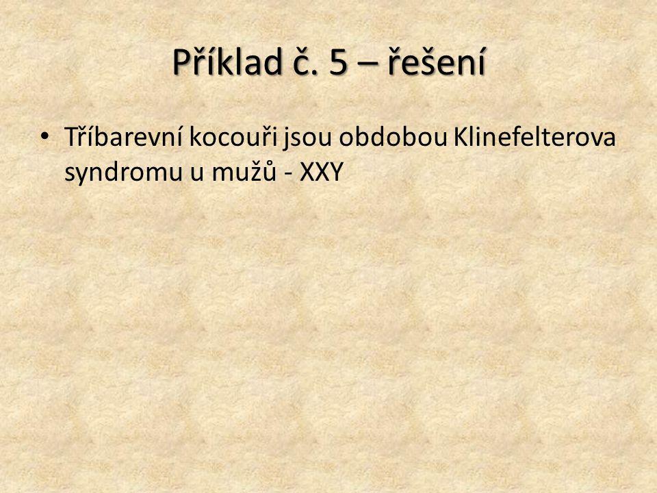 Příklad č. 5 – řešení Tříbarevní kocouři jsou obdobou Klinefelterova syndromu u mužů - XXY