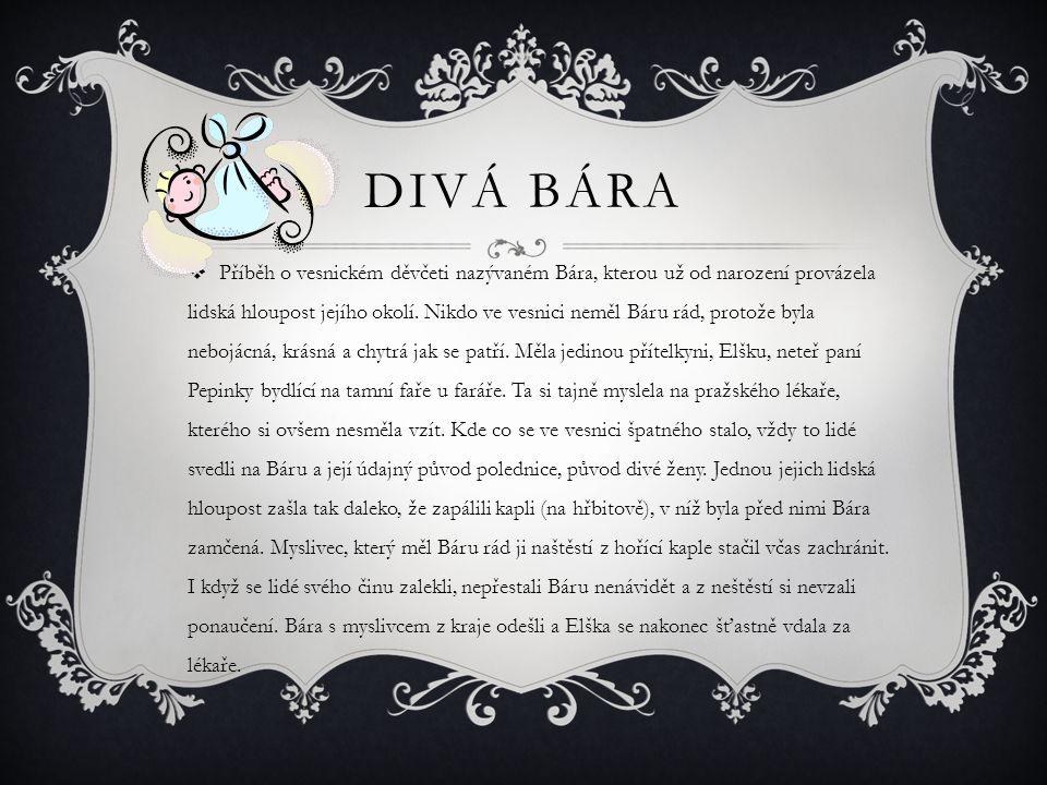 DIVÁ BÁRA  Příběh o vesnickém děvčeti nazývaném Bára, kterou už od narození provázela lidská hloupost jejího okolí.