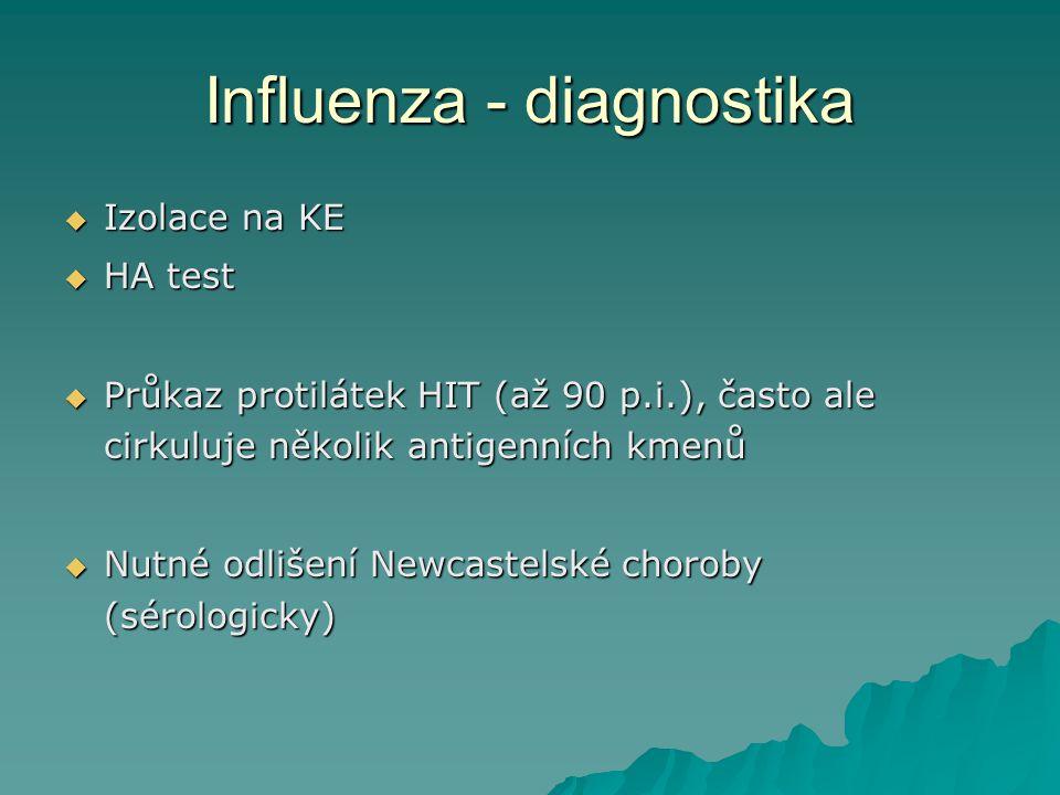 Influenza - diagnostika  Izolace na KE  HA test  Průkaz protilátek HIT (až 90 p.i.), často ale cirkuluje několik antigenních kmenů  Nutné odlišení