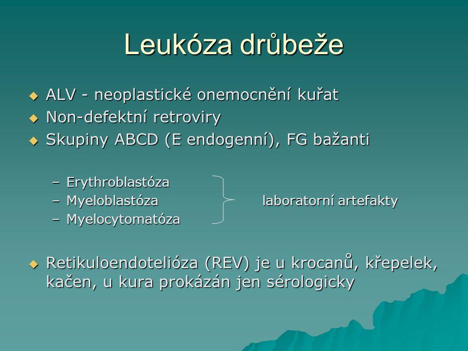 Leukóza drůbeže  ALV - neoplastické onemocnění kuřat  Non-defektní retroviry  Skupiny ABCD (E endogenní), FG bažanti –Erythroblastóza –Myeloblastóz