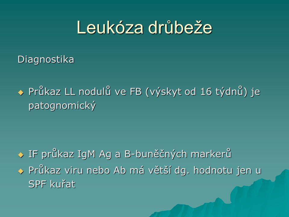 Leukóza drůbeže Diagnostika  Průkaz LL nodulů ve FB (výskyt od 16 týdnů) je patognomický  IF průkaz IgM Ag a B-buněčných markerů  Průkaz viru nebo