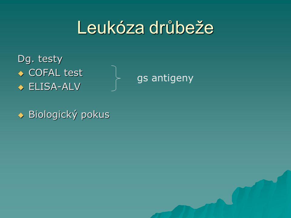 Leukóza drůbeže Dg. testy  COFAL test  ELISA-ALV  Biologický pokus gs antigeny