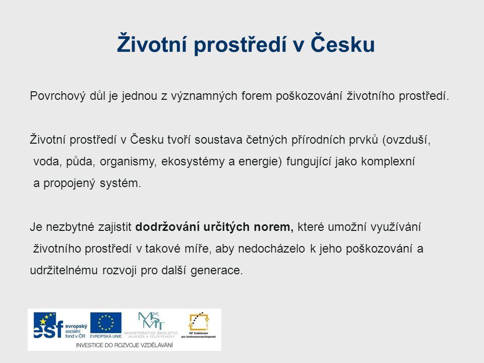Životní prostředí v Česku Povrchový důl je jednou z významných forem poškozování životního prostředí.