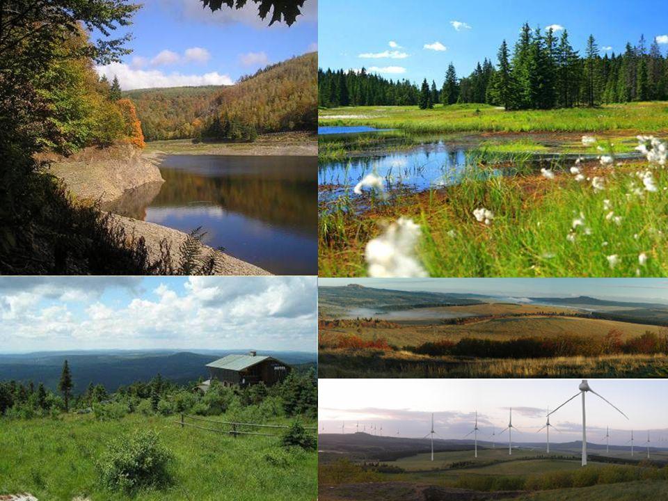NÁRODNÍ PARK ČESKÉ ŠVÝCARSKO  Národní park České Švýcarsko je jeden ze čtyř národních parků České republiky.