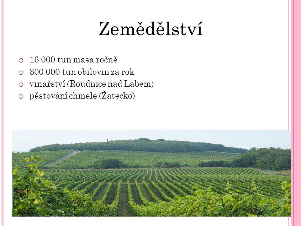 Zemědělství o 16 000 tun masa ročně o 300 000 tun obilovin za rok o vinařství (Roudnice nad Labem) o pěstování chmele (Žatecko)