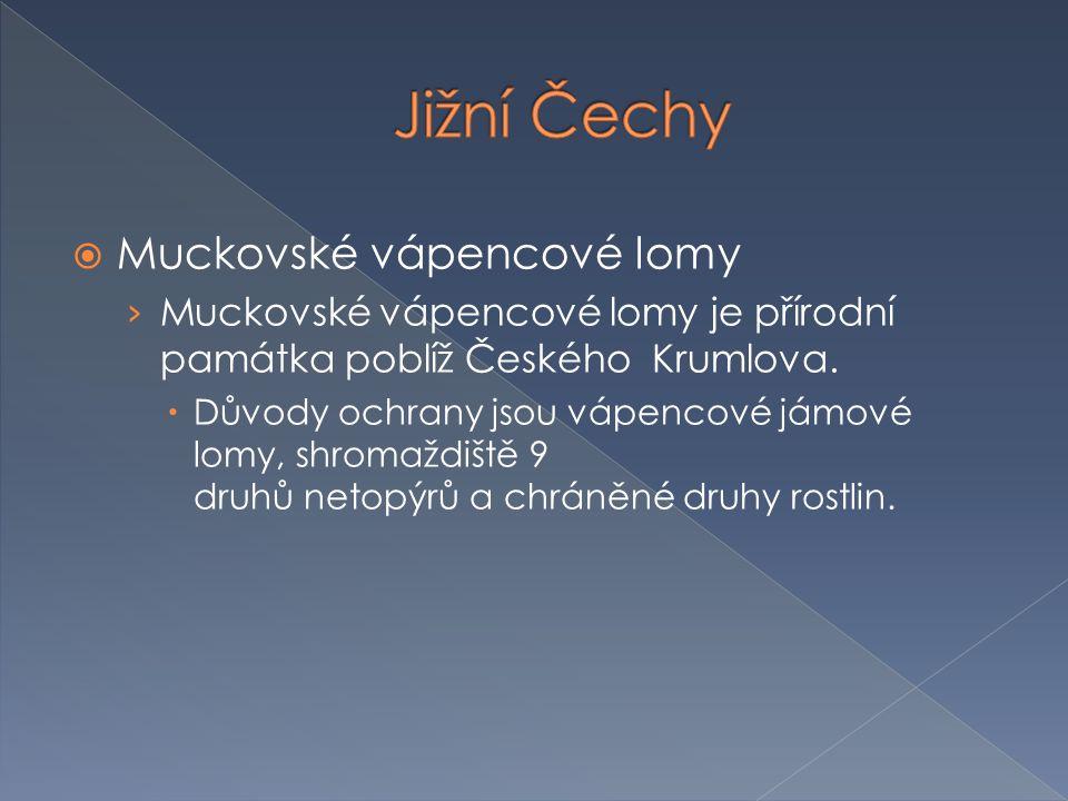  Muckovské vápencové lomy › Muckovské vápencové lomy je přírodní památka poblíž Českého Krumlova.