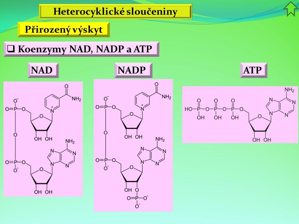 Heterocyklické sloučeniny Přirozený výskyt  Koenzymy NAD, NADP a ATP NADNADP ATP
