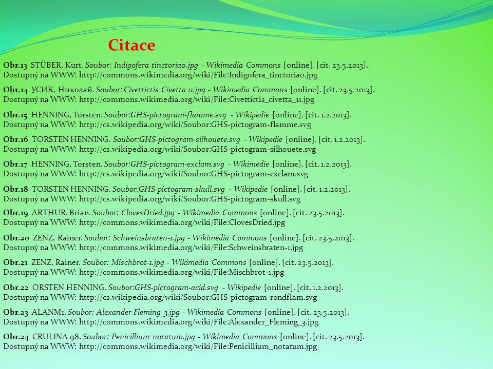 Citace Obr.15 HENNING, Torsten. Soubor:GHS-pictogram-flamme.svg - Wikipedie [online]. [cit. 1.2.2013]. Dostupný na WWW: http://cs.wikipedia.org/wiki/S