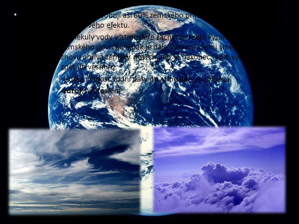 H 2 O (vodní páry) - způsobují asi 60% zemského přirozeného skleníkového efektu. -Molekuly vody v atmosféře zachycují teplo vyzařované ze zemského pov