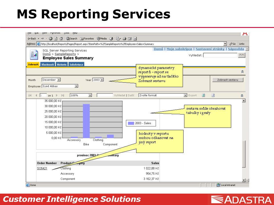 Customer Intelligence Solutions MS Reporting Services
