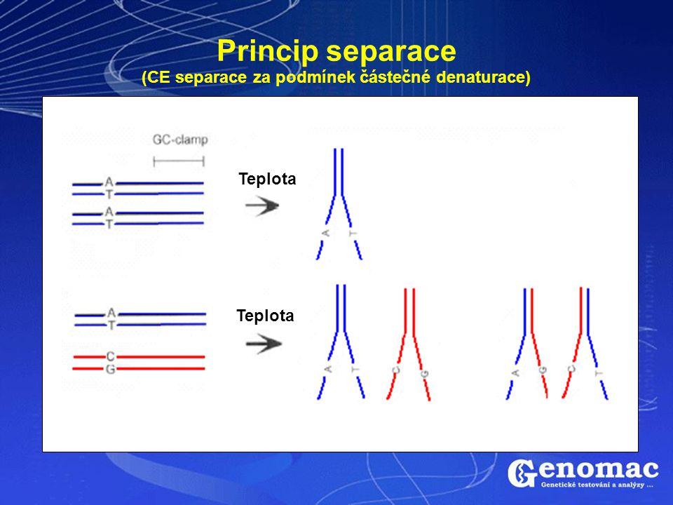 Princip separace (CE separace za podmínek částečné denaturace) Teplota