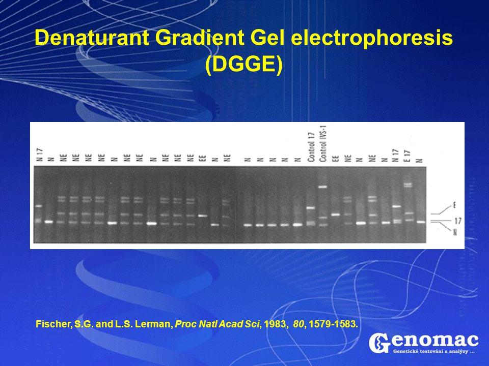 Denaturant Gradient Gel electrophoresis (DGGE) Fischer, S.G. and L.S. Lerman, Proc Natl Acad Sci, 1983, 80, 1579-1583.