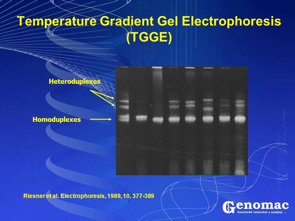 Temperature Gradient Gel Electrophoresis (TGGE) Heteroduplexes Homoduplexes Riesner et al. Electrophoresis, 1989, 10, 377-389