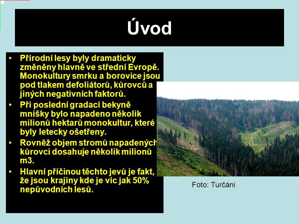 Úvod Přírodní lesy byly dramaticky změněny hlavně ve střední Evropě.