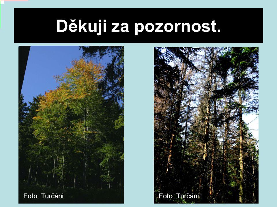 Děkuji za pozornost. Foto: Turčáni