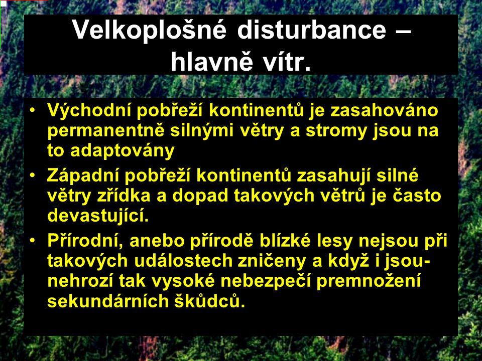 Velkoplošné disturbance – hlavně vítr.