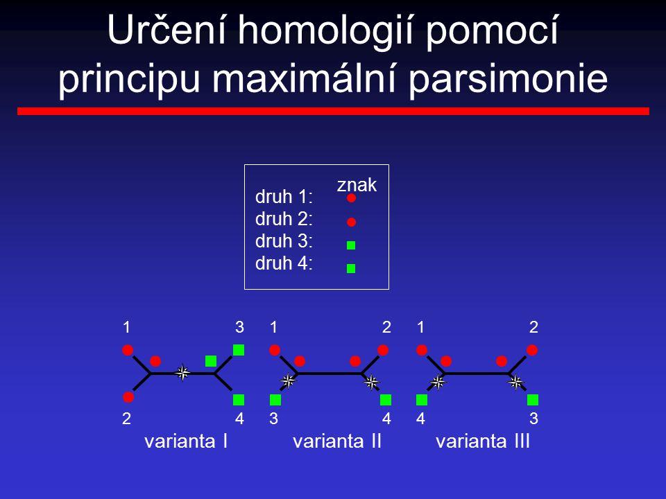 Určení homologií pomocí principu maximální parsimonie varianta Ivarianta IIvarianta III 1 2 3 4 1 3 2 4 1 4 2 3 druh 1: druh 2: druh 3: druh 4: znak