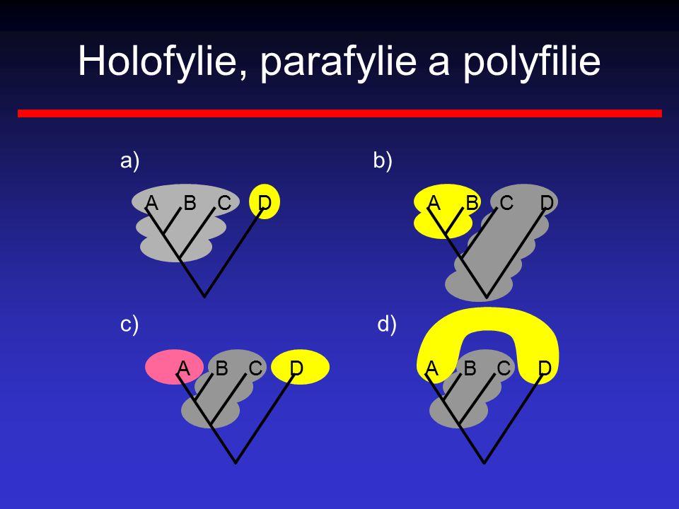 ABCD ABCD ABCD b)a) c)d) ABCD Holofylie, parafylie a polyfilie