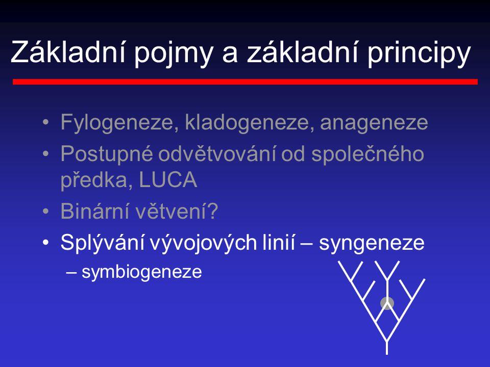 Základní pojmy a základní principy Fylogeneze, kladogeneze, anageneze Postupné odvětvování od společného předka, LUCA Binární větvení? Splývání vývojo