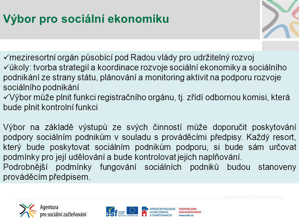 Výbor pro sociální ekonomiku meziresortní orgán působící pod Radou vlády pro udržitelný rozvoj úkoly: tvorba strategií a koordinace rozvoje sociální e