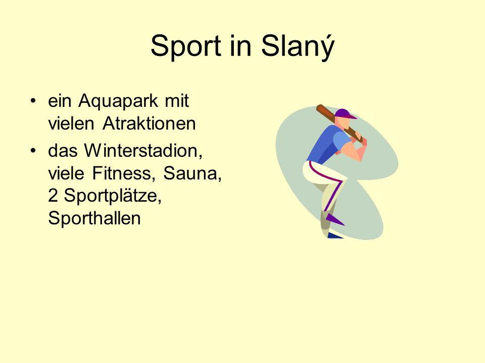 Sport in Slaný ein Aquapark mit vielen Atraktionen das Winterstadion, viele Fitness, Sauna, 2 Sportplätze, Sporthallen