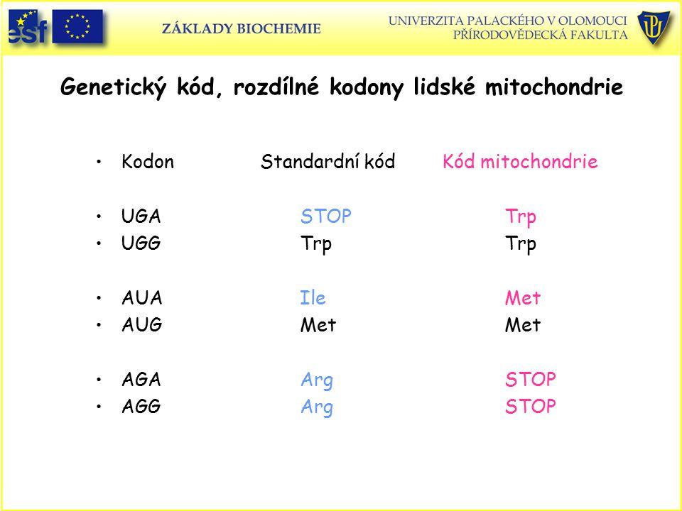 Genetický kód, rozdílné kodony lidské mitochondrie Kodon Standardní kód Kód mitochondrie UGASTOPTrp UGGTrpTrp AUAIleMet AUGMetMet AGAArgSTOP AGGArgSTO