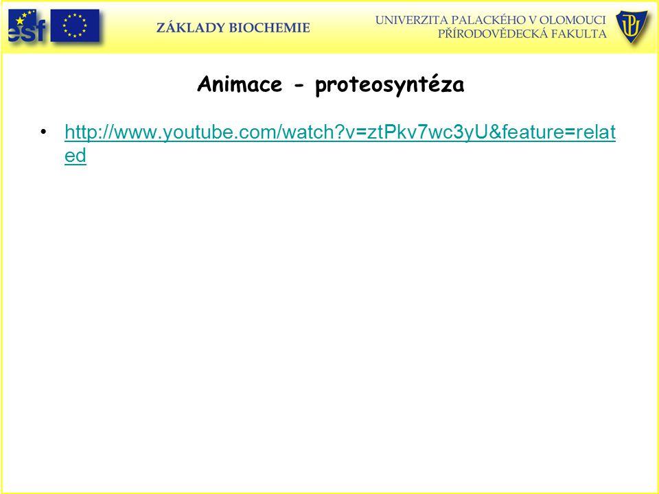 Animace - proteosyntéza http://www.youtube.com/watch?v=ztPkv7wc3yU&feature=relat edhttp://www.youtube.com/watch?v=ztPkv7wc3yU&feature=relat ed