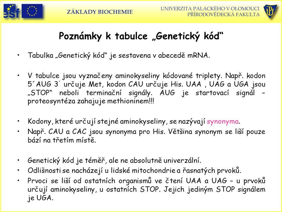 """Poznámky k tabulce """"Genetický kód"""" Tabulka """"Genetický kód"""" je sestavena v abecedě mRNA. V tabulce jsou vyznačeny aminokyseliny kódované triplety. Např"""
