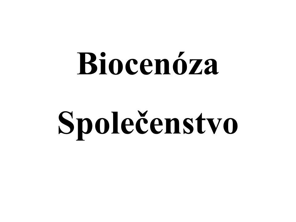 Biocenóza - společenstvo všechno živé na určité ploše zákonité seskupení ekotop vzájemná provázanost organismů 26