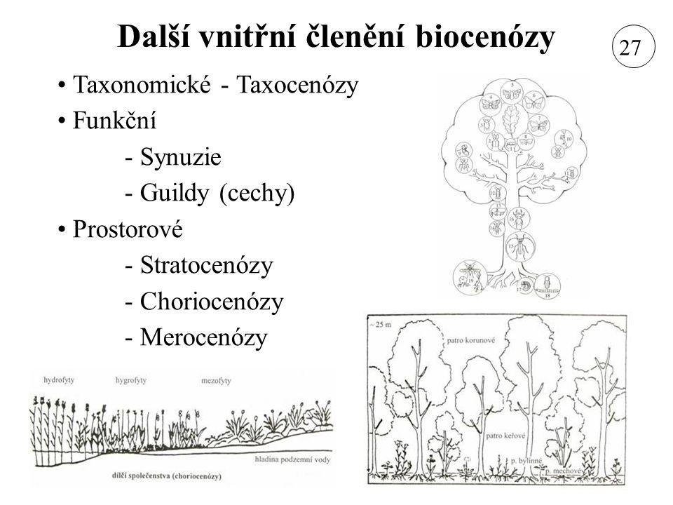 Další vnitřní členění biocenózy Taxonomické - Taxocenózy Funkční - Synuzie - Guildy (cechy) Prostorové - Stratocenózy - Choriocenózy - Merocenózy 27