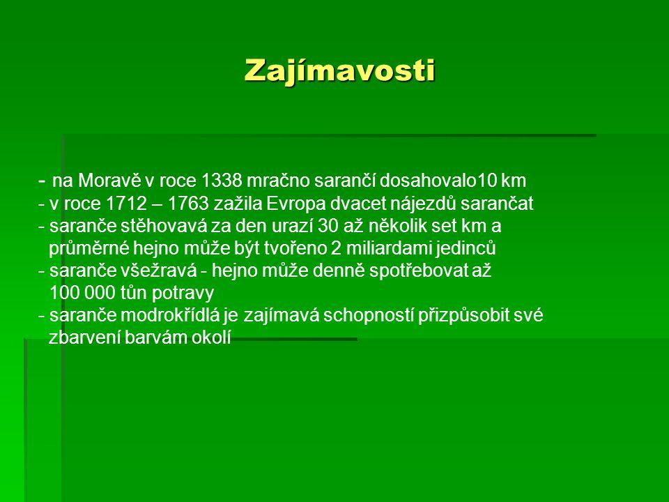 Zajímavosti - na Moravě v roce 1338 mračno sarančí dosahovalo10 km - v roce 1712 – 1763 zažila Evropa dvacet nájezdů sarančat - saranče stěhovavá za d