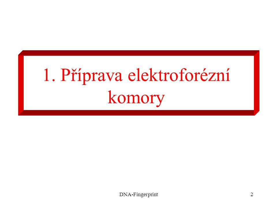 DNA-Fingerprint2 1. Příprava elektroforézní komory
