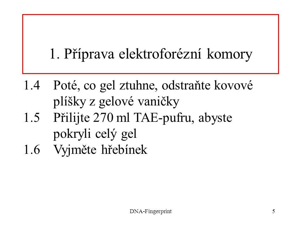 DNA-Fingerprint6 2. Příprava vzorků pro gelovou elektroforézu