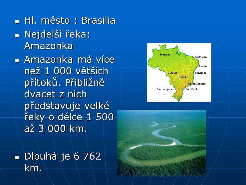 Hl. město : Brasilia Hl. město : Brasilia Nejdelší řeka: Amazonka Nejdelší řeka: Amazonka Amazonka má více než 1 000 větších přítoků. Přibližně dvacet