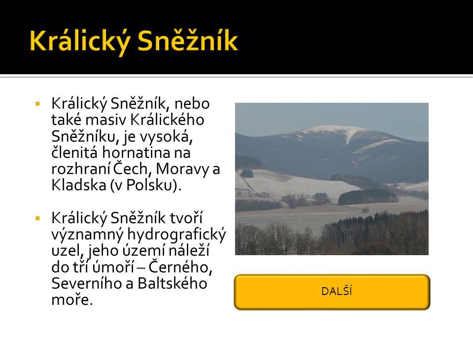  Králický Sněžník, nebo také masiv Králického Sněžníku, je vysoká, členitá hornatina na rozhraní Čech, Moravy a Kladska (v Polsku).  Králický Sněžní
